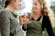 Two women toasting with wine glasses - CUF13764