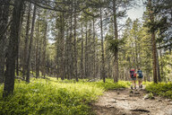 Rear view of teenage girl and young female hiker hiking in forest, Red Lodge, Montana, USA - CUF14897