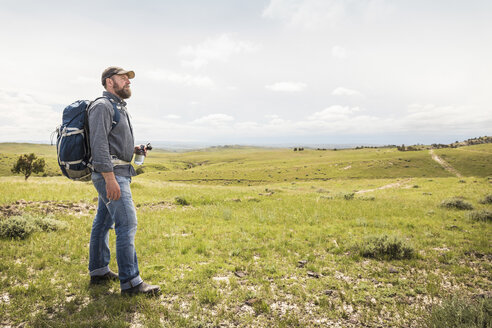 Mature male hiker looking out over landscape, Cody, Wyoming, USA - CUF15068