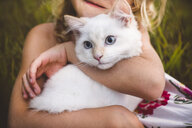 Cropped view of girl hugging cat - CUF15701
