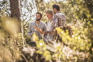 Three male hikers reading map in forest, Deer Park, Cape Town, South Africa - CUF17108