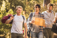 Four male hikers hiking through forest with map, Deer Park, Cape Town, South Africa - CUF17114