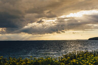 Germany, Ruegen, coast and Baltic sea under cloudy sky - MJF02299