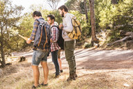 Four male hiking friends planning with map in forest, Deer Park, Cape Town, South Africa - CUF18830