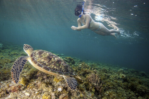 Young woman swimming with rare green sea turtle (Chelonia Mydas), Moalboal, Cebu, Philippines - CUF19279