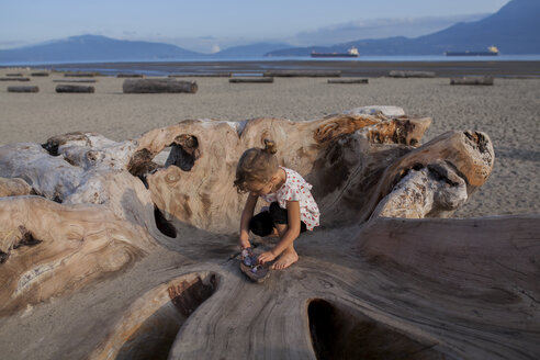 Little girl playing on wood sculpture on beach, Vancouver, British Columbia, Canada - ISF07449