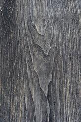 Wood surface, Teak wood, Tectona grandis, full frame - CRF02798