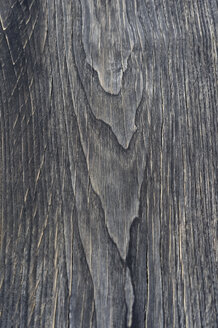 Wood surface, Teak wood, Tectona grandis, full frame - CRF02798