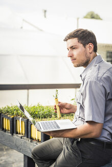 Scientist with laptop and seedling plant in plant growth research centre greenhouse - CUF20260
