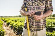 Man in vegetable garden texting on smartphone - CUF20293