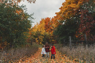 Two girls and toddler sister looking at autumn leaves on rural path - ISF07638