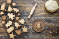 Various home-baked gingerbread cookies on cooling grid and dough ball - SKCF00470