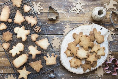 Various home-baked gingerbread cookies - SKCF00473