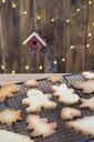 Various home-baked gingerbread cookies on cooling grid - SKCF00476
