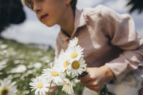 Boy picking flowers on a meadow - KMKF00267