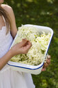 Girl holding bowl of picked elderflowers, partial view - LVF07019