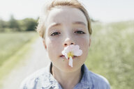 Portrait of boy with blossom in his mouth - KMKF00338