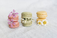 Macarons with blossoms - JPF00324