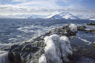 Antarctic, Antarctic Peninsula, glaciated mountains in Lemaire Channel - CVF00678