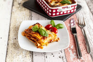 Vegetarian lasagne bolognese with basil and tomato - SARF03762