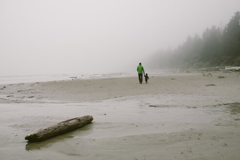 Father and son walking on beach, rear view, Long Beach, Vancouver Island, British Columbia, Canada - CUF23239
