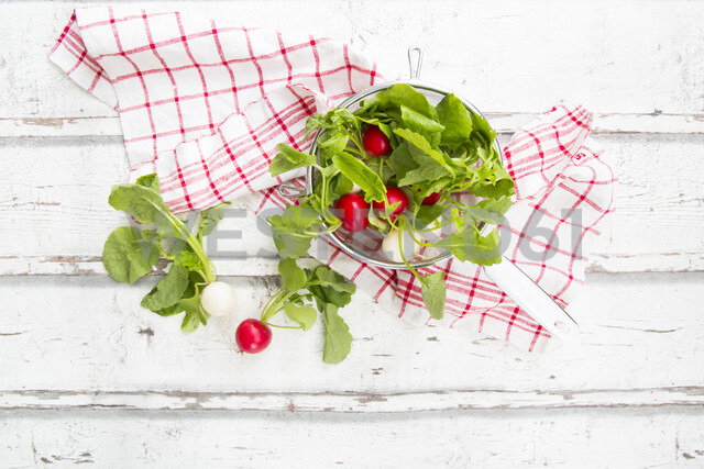 Red and white radish in strainer and kitchen towel - LVF07036
