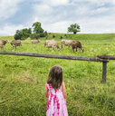Real view of girl looking at cows grazing in field, Fuessen, Bavaria, Germany - CUF23358