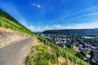 Germany, Rhineland-Palatinate, View to Leutesdorf and Andernach at River Rhine - THAF02173