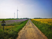 Wind turbines at rural field - FRF00676