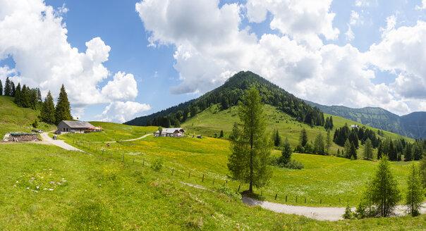 Austria, Salzburg State, Tennengau, Sankt Koloman, View to alp, Taugelboden and Regenspitz - WWF04229