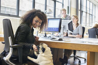 Young woman petting dog at office desk - CUF25341