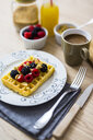 Waffle garnished with wild berries and muesli - GIOF03949