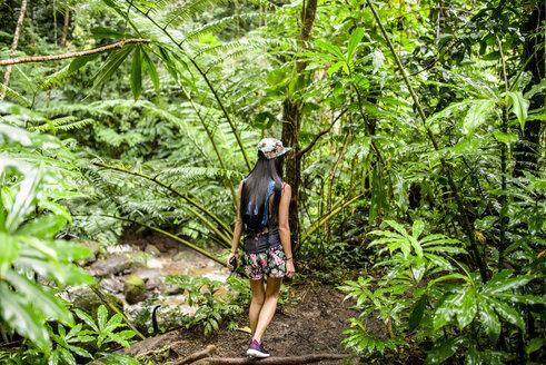 Rear view of young female tourist strolling in jungle,  Manoa Falls, Oahu, Hawaii, USA - CUF27443