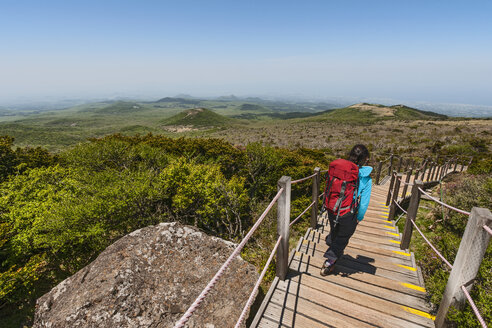 Rear view of woman hiking down wooden steps, Jeju Island, South Korea - CUF27590
