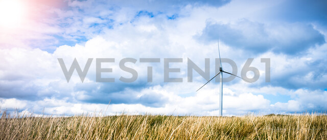Panoramic view of long grass and wind turbine, UK - CUF28306