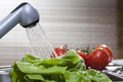 Lettuce and vine tomatoes washing in kitchen sink - CUF28339