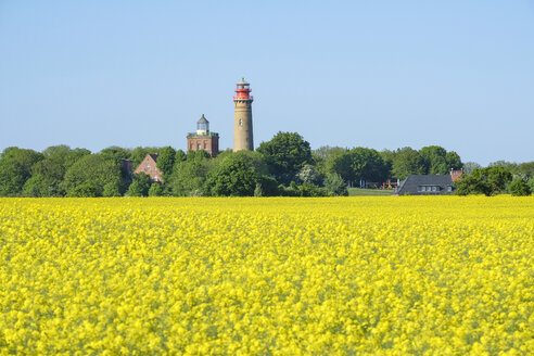 Germany, Mecklenburg-Western Pomerania, Rugen, Schinkel tower and the new lighthouse near Kap Arkona, rape field in the foreground - ELF01873