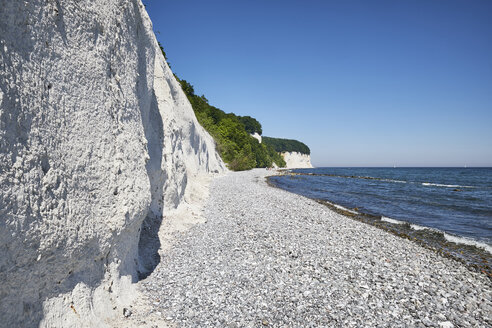 Germany, Mecklenburg-Western Pomerania, Ruegen, Sassnitz, Jasmund National Park, chalk coast - ELF01881