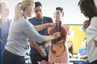Lecturer speaking to college students in human anatomy class - CUF29531