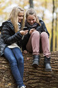 Girls using smartphone on tree trunk in autumn forest - CUF30526