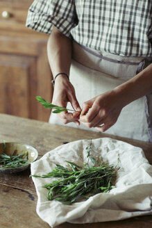 Young woman cleaning fresh tarragon - ALBF00442