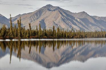 USA, Alaska, Denali Road in autumn - CVF00831