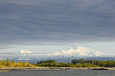 USA, Alaska, Mt. McKinley seen from Denali Road in autumn - CVF00834