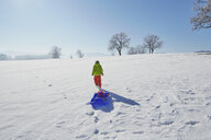 Young boy walking in snow, pulling sled behind him, rear view - ISF10019