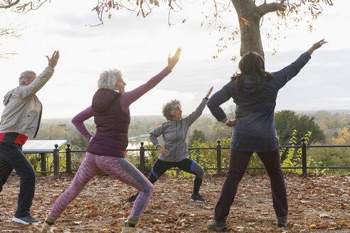 Active seniors practicing yoga in autumn park - CAIF20924