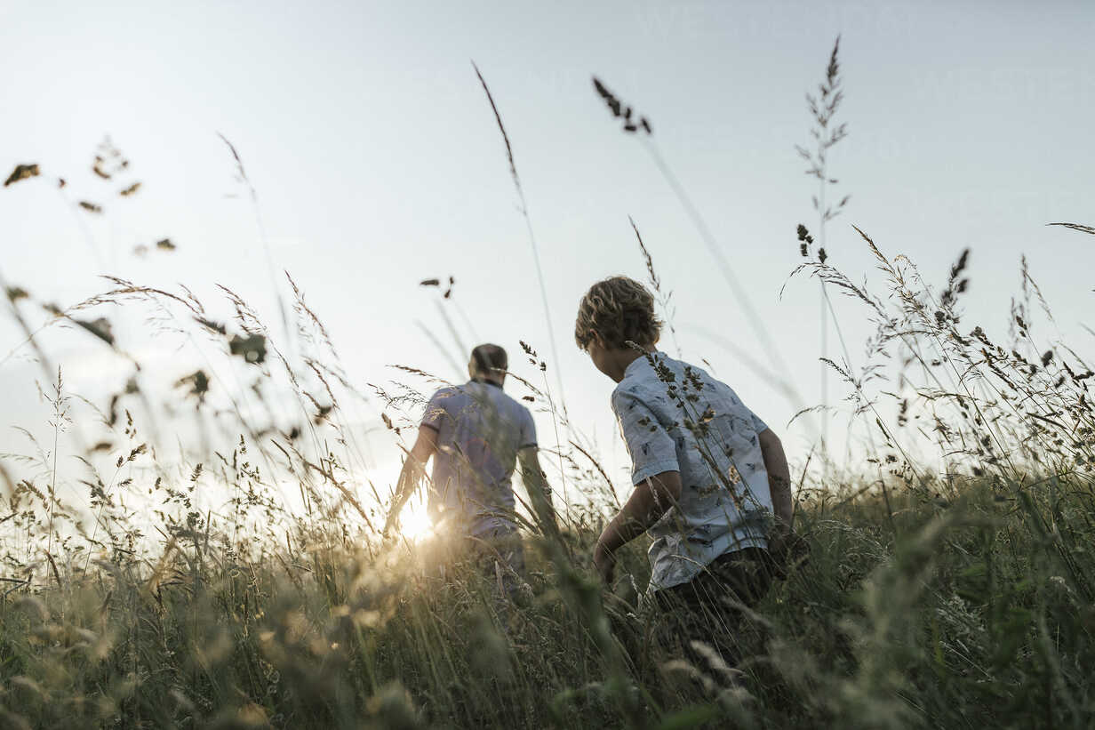 Boy and his father walking in nature at sunset - KMKF00362 - Katharina Mikhrin/Westend61