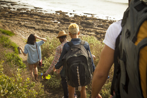 Group of friends walking down towards beach, rear view - ISF10708