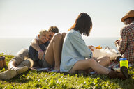 Group of friends relaxing on grass - ISF10714