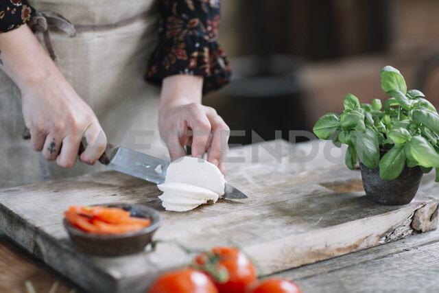 Woman's hands preparing Caprese Salad - ALBF00521 - Alberto Bogo/Westend61