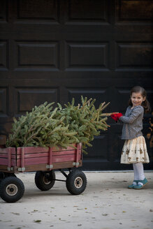Portrait of a girl pushing cart with christmas tree - ISF12903